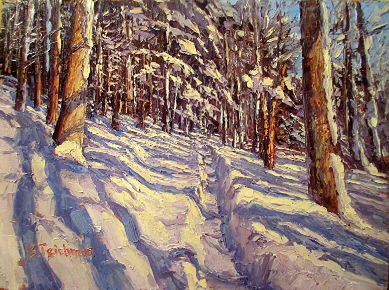 Brocha Teichman Work Zoom Through The Snowy Woods