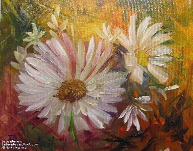 Daisies by Barbara Haviland--BarbsGarden by Barbara Haviland Oil ~ 8 x 10