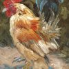 Rooster (Print)