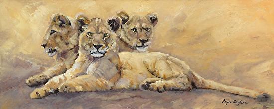 The Three Sisters - Fine Art Animal Prints & Paintings Oregon - Oil