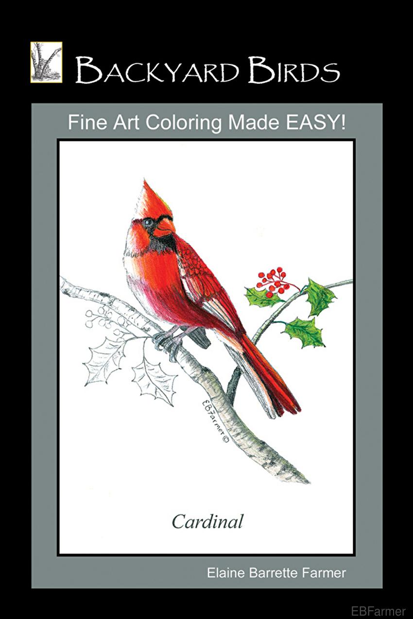 Backyard Birds Coloring Book White Birch Fine Art