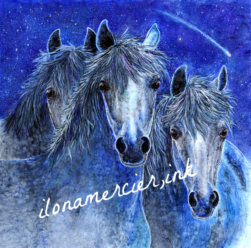 Ilona Mercier Work Zoom Galaxy Horses